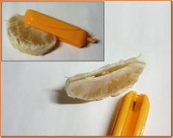 土佐文旦の食べ方2−6