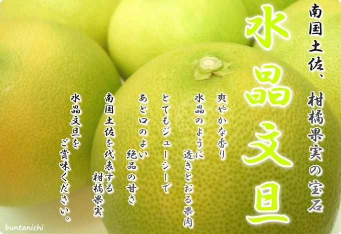 柑橘果実の宝石、水晶文旦