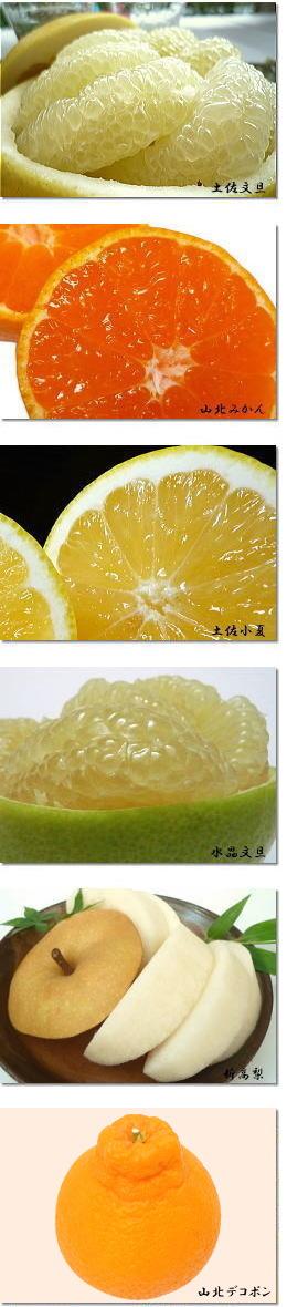 高知県の果物たち